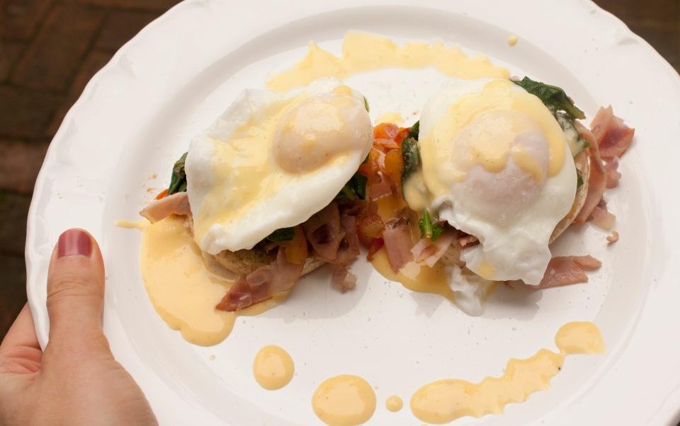 Eggs_39.jpg062114